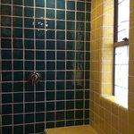 master bath's shower from calypso heaven!