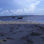 Ilha do Delta do Parnaíba