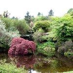 Mount Stuart House gardens 2