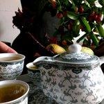 Rea tea: green, black , herbal and ginger!