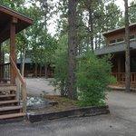 Bristlecone Cabins