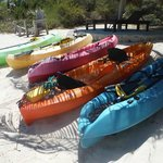 The fleet of kayaks...makes me crave skittles