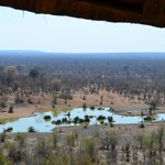 view of water hole