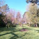 Un magnifique jardin dans lequel on aime se balader avant ou après manger