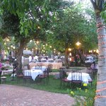 Open air buffet dinner under the trees.