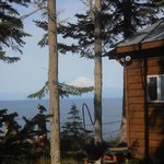 Bild från Ocean Bluff Bed and Breakfast