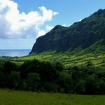 View from within Kualoa Ranch