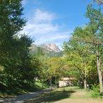 Photo de Domaine Chasteuil Provence