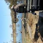 Morning tea stop at a waterhole with Service, our tracker