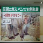 前ボス猿ベンツお別れ写真