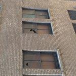 Condition of building next door