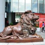 Lucky lion!