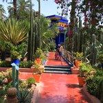 visite jardins majorelle
