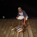 Bountiful fishing... just off the dock