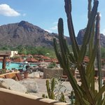 gorgeous view of Camelback mountain and pool from our terrace