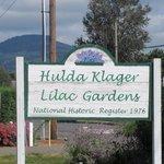 Hulda Klager Lilac Gardens, Woodland, WA