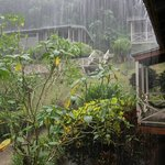 Sweet rain in the mountains