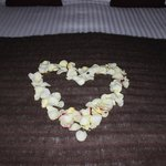 Rose Pedals for Anniversary
