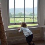 Joshua enjoying the view!