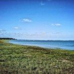 Marshes & tidal creeks