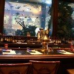 Bar Area & Wall Fish Tank