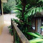 Foto de Limpinwood Lodge