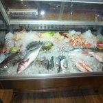 Great Fish Display