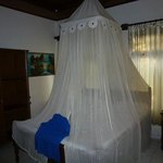 room with mozzie net