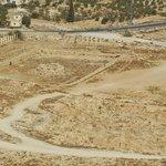 panorama sur le desert environnant (avec une oliveraie)