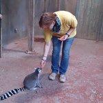 zoo staff with lemur