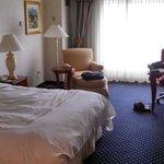 Room 719