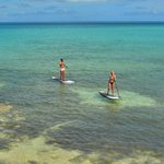 Paddle boarding at Daniel's Head Beach