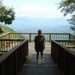 Coll Springs Overlook (ADA)