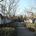 acceso a los bungalow