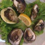 Fresh oysters 100 kuna