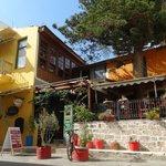 Photo of Arocaria Cafe