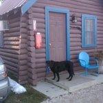 Cozy Cabin #7