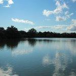 Vue de l'étang du Parc... paisible !