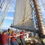 Lowering the Main Sail