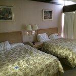 The 2 Queen Bed Room