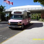 the shuttle buses