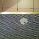 Bare patch on carpeting