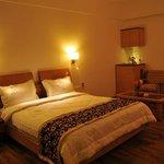 Photo de Hotel Rock Regency