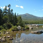 Looking for moose in Baxter State Park