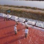 Salin d'Aigues-Mortes