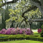Take a scenic stroll around Baton Rouge at the Capitol Gardens, University Lakes or one of our m