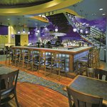 Dolphin Reef Restaurant and Sports Bar serves up great food, entertainment and amazing ocean vie