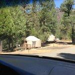 Hillside Yurts placement