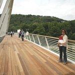 Ponte della Musica 1