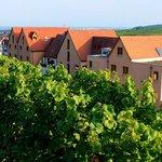 Rear of hotel from Schoenenbourg vineyard